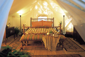 Wilderness Bed in a Tent