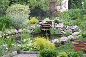 Outdoor Garden Pond