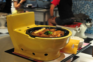 Modern Toilet Bowl of Food