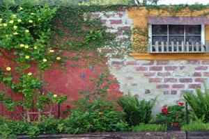 Outdoor Walls